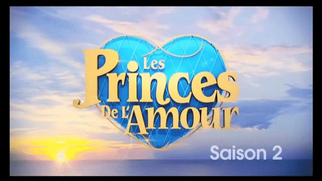 Les Princes de l'amour 2 : découvrez le salaire de Benjamin, Charles, Anthony et les autres princes