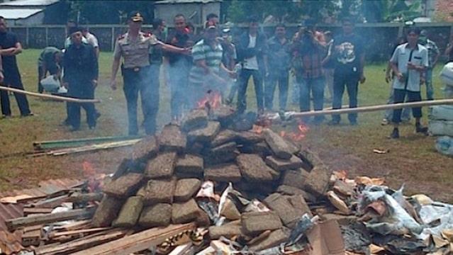 La police brûle une saisie de cannabis, les habitants finissent stones