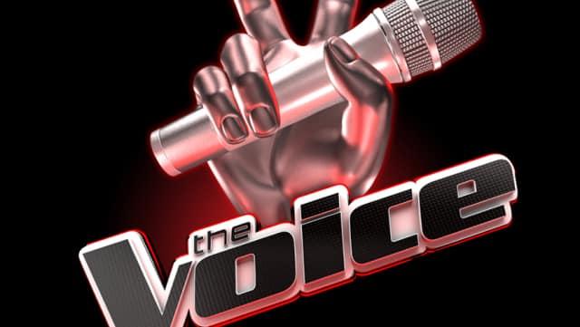 The Voice 4- les candidats réunis à Disney avec Karine Ferri !