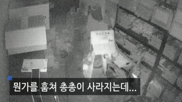 Metal-Gear-Solid-un-coréen-cambriole-une-centaine-de-boutiques-façon-Solid-Snake