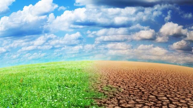 6 jeunes sur 10 perçoivent le changement climatique comme une opportunité