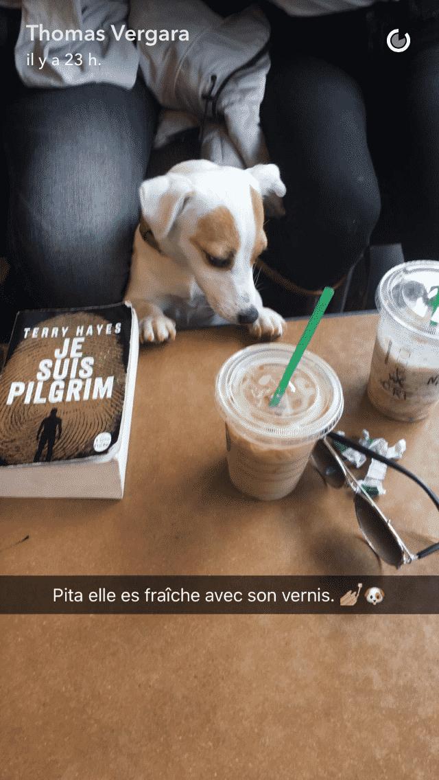 Nabilla offre une manucure à sa chienne Pita et amuse ses fans sur Snapchat !