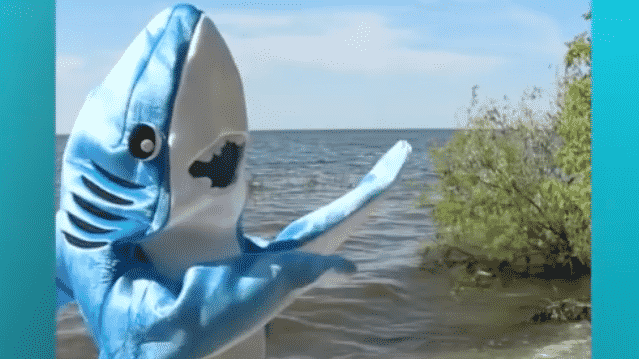 """Sharkira le requin parodie """"Hips don't lie"""" de Shakira et fait un buzz international sur Youtube"""
