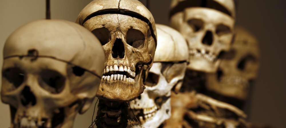 1000 Afrique du Sud Cannibalisme