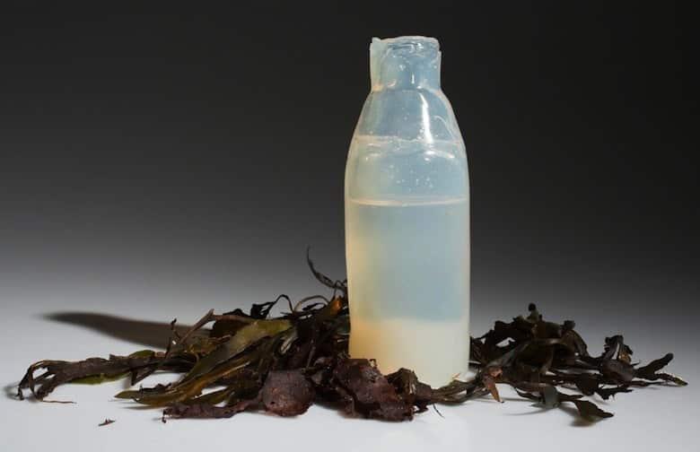 Environnement Un étudiant islandais crée une bouteille biodégradable