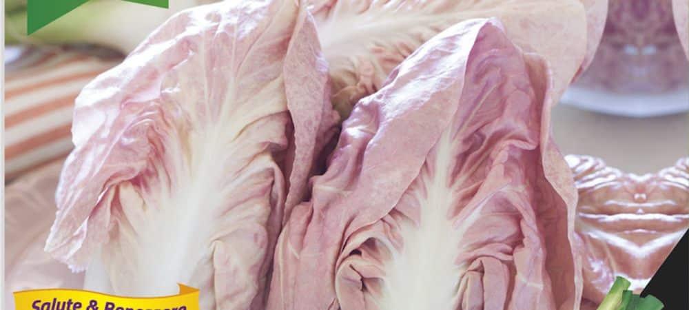 Food le Radicchio del veneto, la laitue rose très tendance du printemps !