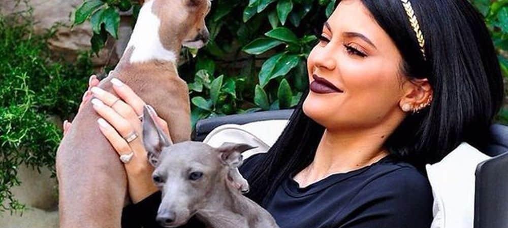 Snapchat Kylie Jenner offre une mini-maison à ses chiens GRANDE