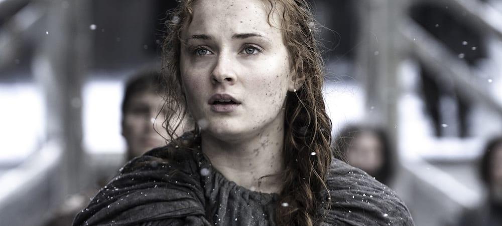 Game of Thrones: Des litières pour chats et chiens inspirées de la série HBO !