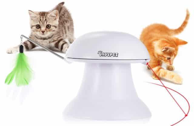 16 Ce laser automatique va rendre fou votre chat. Après ça, il sautera moins partout dans votre salon et ça l'occupera énormément