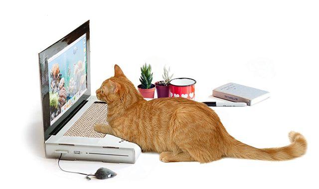 21 Et si votre chat se mettait à l'informatique avec ce joli grattoir
