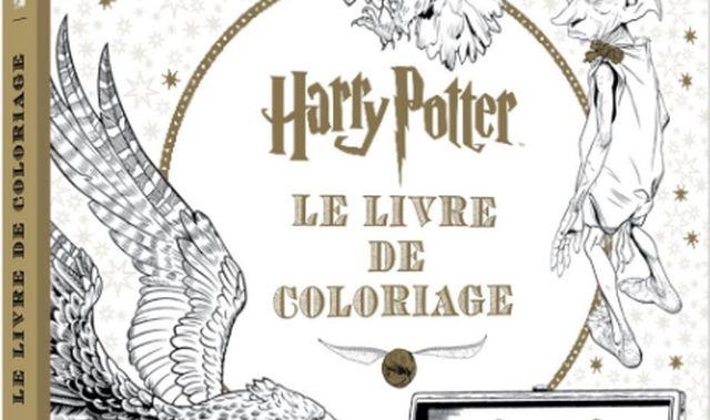 52 Les fans du célèbre sorcier peuvent donner une autre dimension à Harry Potter. Vous pouvez changer toutes les couleurs et aussi les personnaliser avec ce livre de coloriages