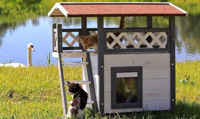 2 Vous avez un petit jardin, offrez lui plutôt cette cabane à chat. Il va adorer y squatter