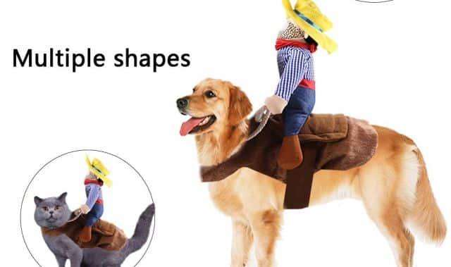 1 Petit déguisement de cowboy pour ton chien préféré. Il va passer la soirée de la terreur à faire du rodéo