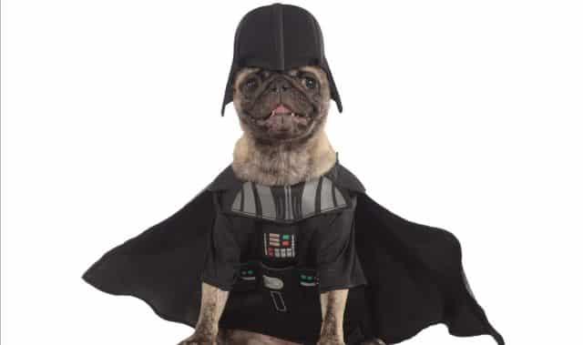 15 Vous pouvez aussi transformer votre chien en DArk Vador. Les fans de Star-Wars vont adorer