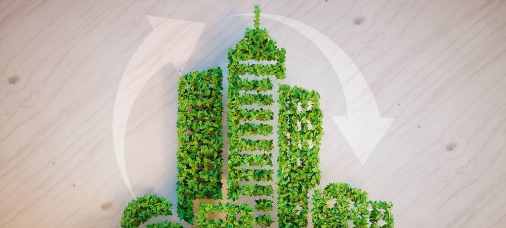 Ecologie: six façons de protéger la Terre à l'université !