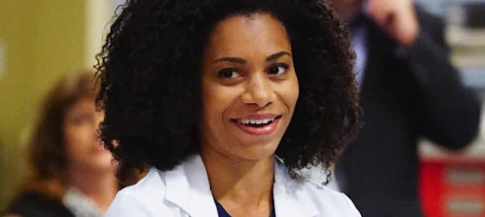 Grey's Anatomy saison 16: la soeur de Kelly McCreary (Maggie) rejoint le casting !