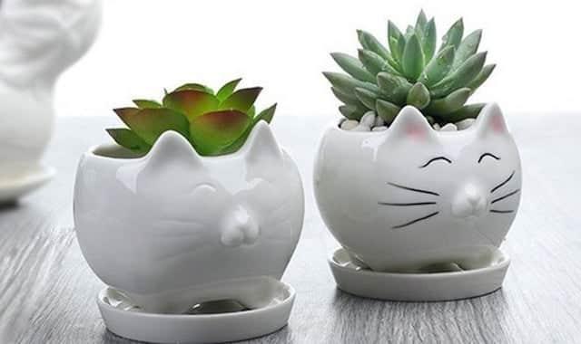 Pot de fleur en céramique pour succulent. Pour toutes celles qui aiment les chats et qui n'ont pas la main verte