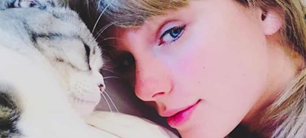 Taylor Swift complètement accro aux chats: elle pense être née pour ça !