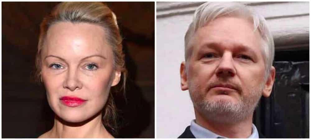 Pamela Anderson: son ex accusé d'espionnage et de conspiration !