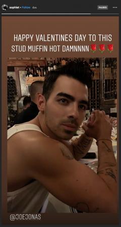 Sophie Turner et Joe Jonas: leur fête de Saint-Valentin dévoilée
