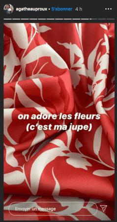 Agathe Auproux sa jupe colorée fait l'unanimité auprès des fans 28052020-