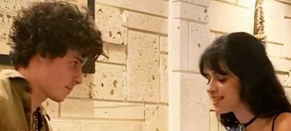 Camila Cabello et Shawn Mendes accusés d'être un faux couple1000