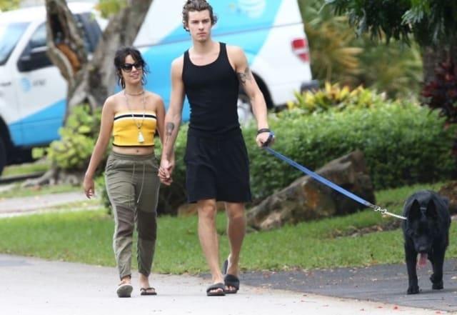 Camila Cabello et Shawn Mendes très proches en promenade !