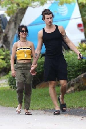 Camila Cabello et Shawn Mendes ne se quittent pas du confinement !