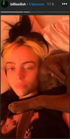Billie Eilish et son chien