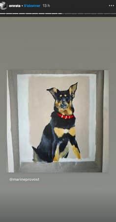 Emily Ratajkowski: son chien Colombo aussi se fait tirer le portrait !