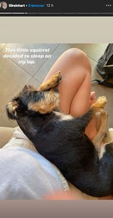 Lili Reinhart: son petit chien adore s'endormir sur elle !
