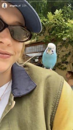Angèle se lie d'amitié avec une perruche dans un bar 640