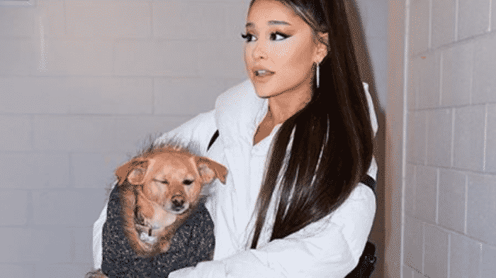 Ariana Grande vient de battre un nouveau record grâce à ses tubes !