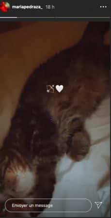 María Pedraza ne se sépare plus de son petit chat depuis le confinement !