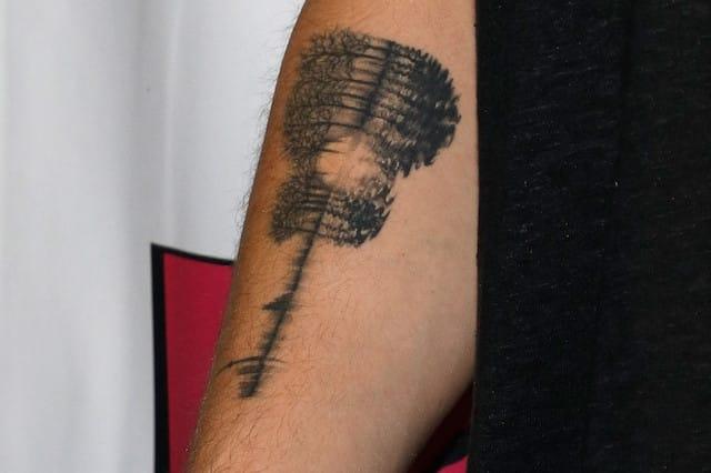 Shawn Mendes: que signifient ses différents tatouages ?