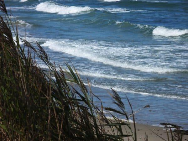 Vacances d'été: l'air marin est très bon pour la santé !