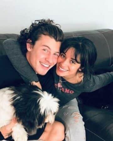 Camila Cabello: ces détails qui prouvent qu'elle est encore avec Shawn Mendes !