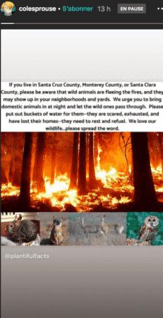 Cole Sprouse très inquiet par les nombreux incendies en Californie 24082020-
