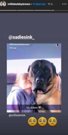 Millie Bobby Brown: son chien lui manque énormément !