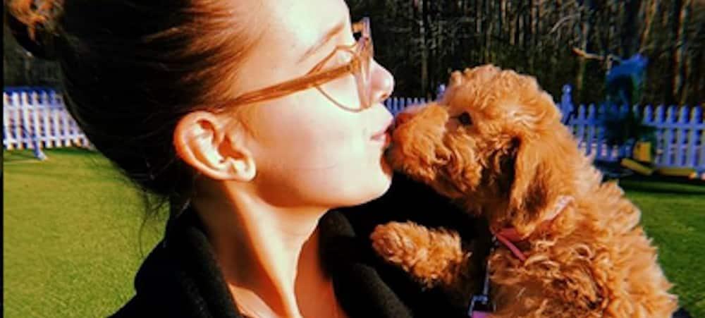 Millie Bobby dévoile des clichés adorables avec son chien sur Instagram !