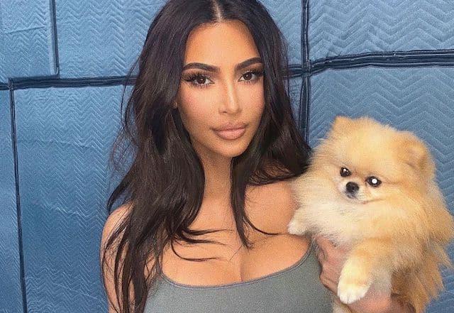 Kim Kardashian se teint les cheveux et ça lui va à merveille !