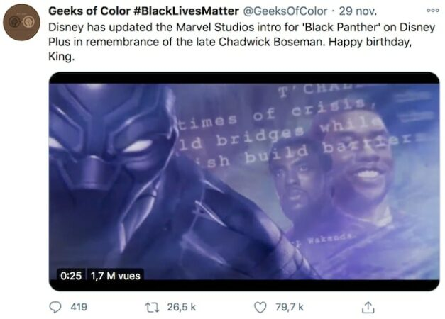 Disney+: leur hommage très touchant à Boseman dans «Black Panther» !