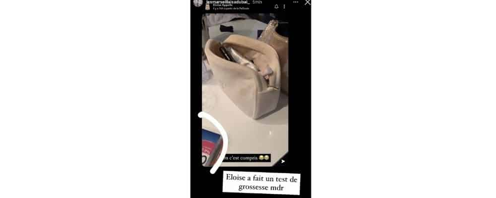 Les Marseillais_ une candidate dévoile par accident un test de grossesse