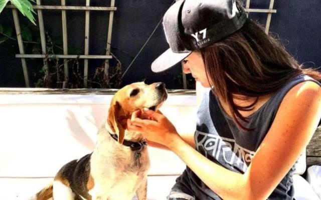 Meghan Markle: ses chiens lui ont été d'un grand soutien en 2020 !