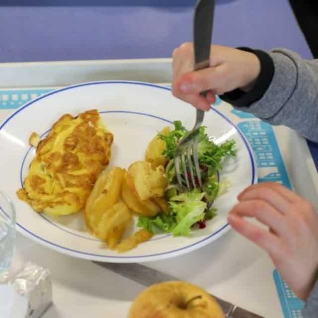 Ecole: pourquoi les menus sans viande dans les cantines à Lyon divisent ?