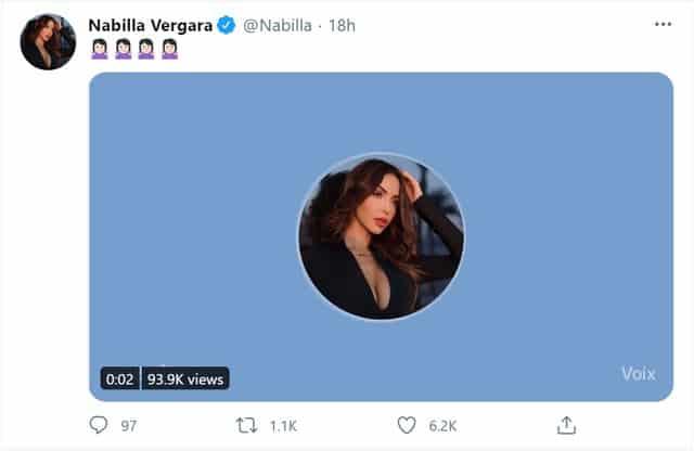 Nabilla fait pleurer de rire ses fans avec cette découverte Twitter !