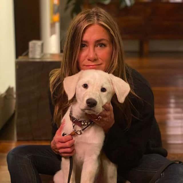 Jennifer Aniston: Whitney Cummings se tatoue pour lui rendre hommage !