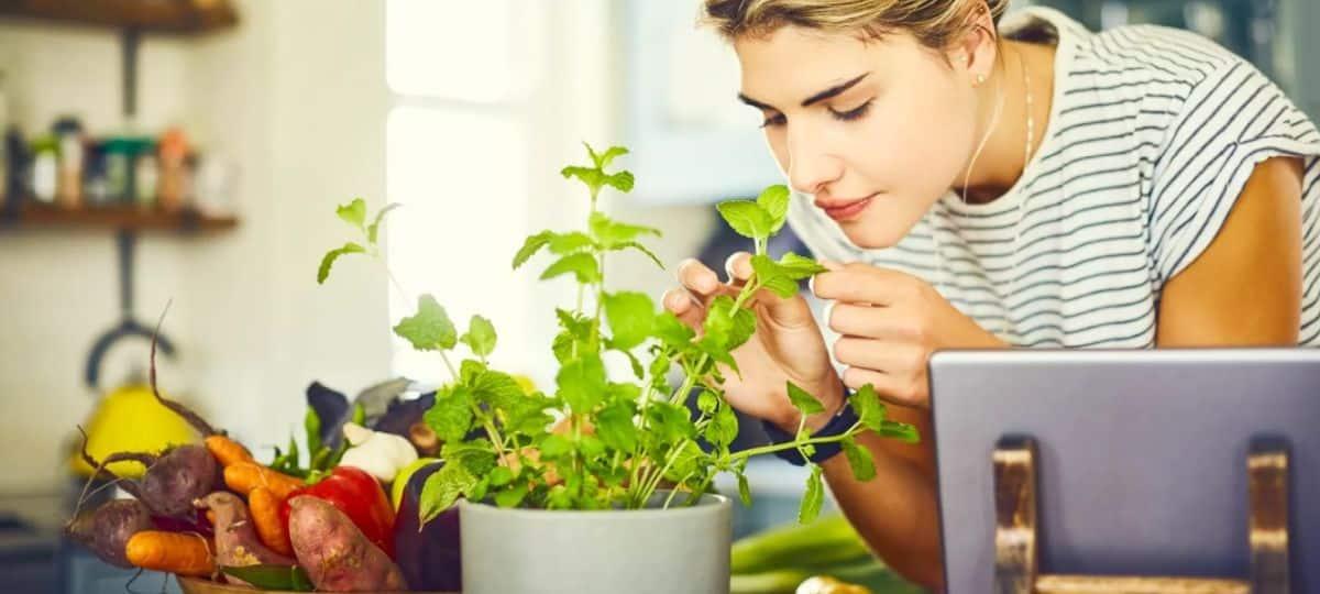 Confinement le boom du jardinage en ville chez les étudiants!