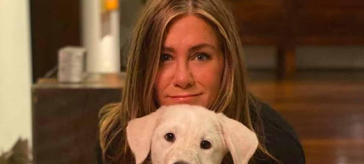 Jennifer Aniston très proche de ses co-stars de Friends ?