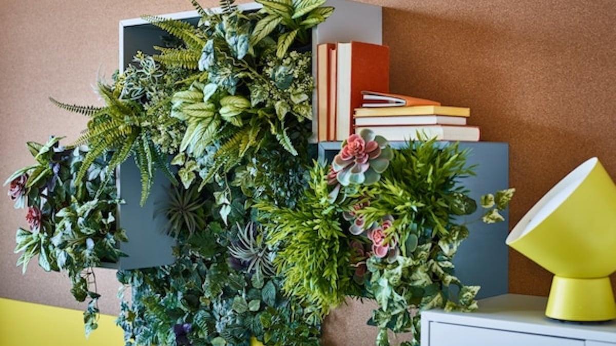 Ikea sort des plantes à moins de 10 euros parfaites pour cet été !